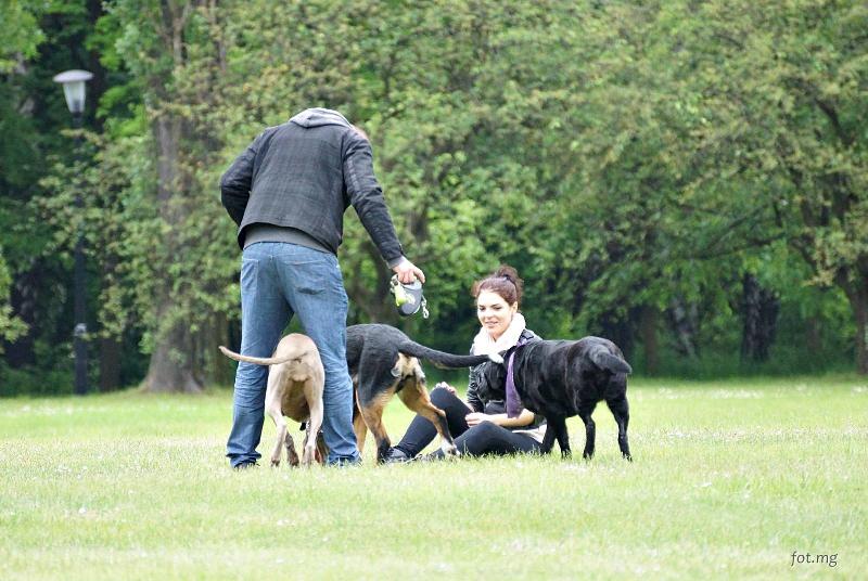 Spotkanie w Parku Śląskim, 23 maja 2015