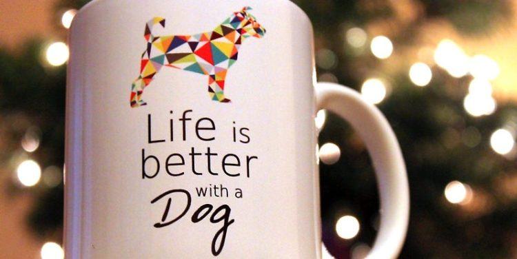 pomysł na prezent dla miłośnika psów