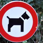 Tabliczki z zakazem wyprowadzania psów