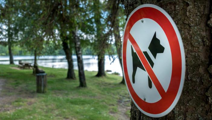 Tabliczki z zakazem wyprowadzania psów na terenie wspólnoty mieszkaniowej