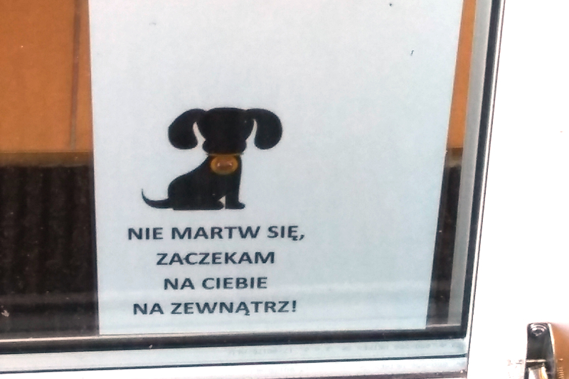 Zostawianie psa pod sklepem i w innym miejscu publicznym