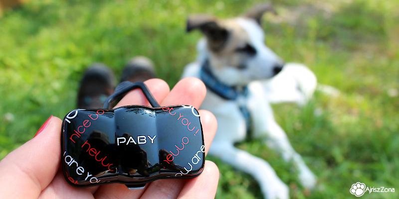 Paby GPS lokalizator i monitor aktywności dla psa
