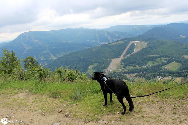 Beskidy z psem - pomysły na wyjazd, co zobaczyć z psem w Beskidach?