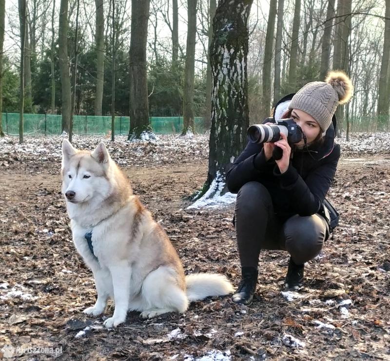 fotograf zwierząt katowice