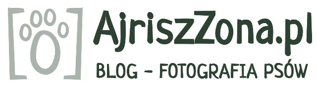 Blog i fotografia psów AjriszZona.pl
